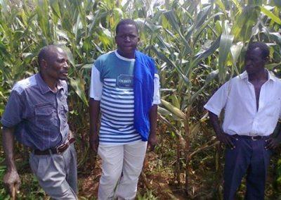 Kwenderana committee members in the community maize garden